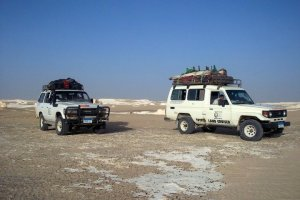 Our JEEPs in the Western Desert.